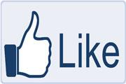 Facebook-Like-180